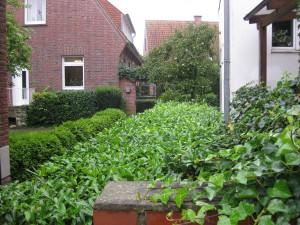 Altenberge 8