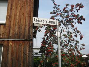 Münster Amelsbüren 5
