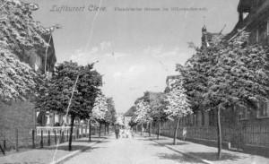 Flandrische Straße mit Rot- und Weißdornbäumen im Wechsel