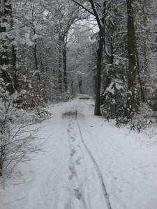 Planegg Karl-Leisner-Weg 2