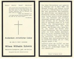Schmitz4