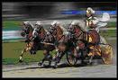 wagenrennen_rom